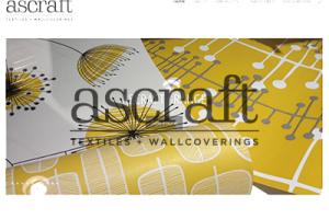 Ascraft website design